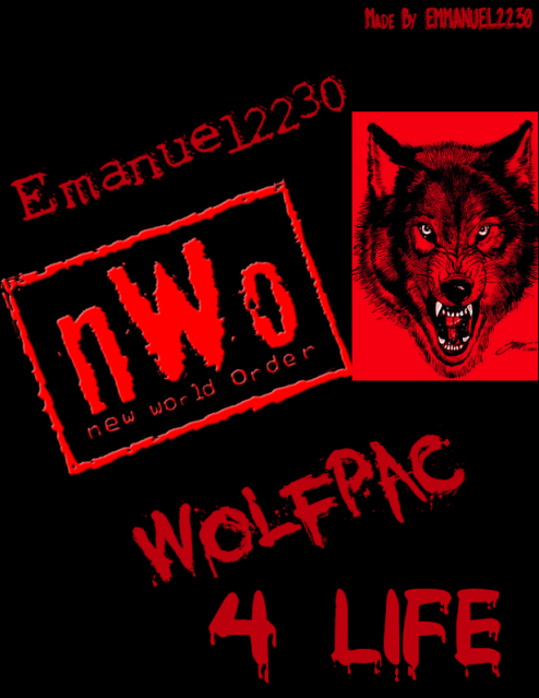 Nwo Wolfpack Logo G1 Wallpaper Pictures 494x639
