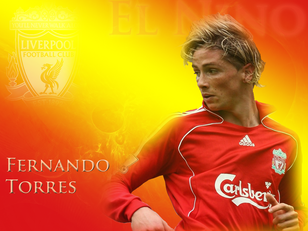 Sports and Players Fernando Torres Wallpapers 1024x768