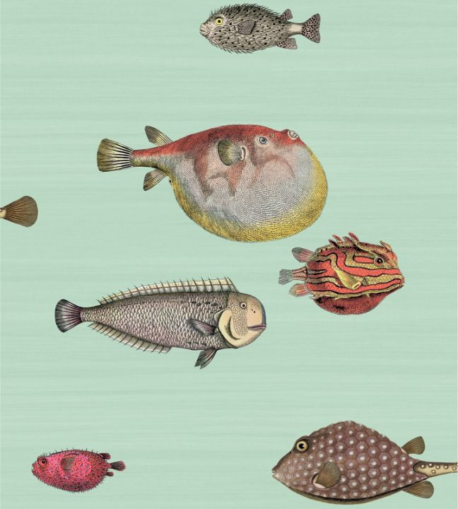 Home Brands Cole Son Fornasetti II Cole Son Acquario 97 648x720