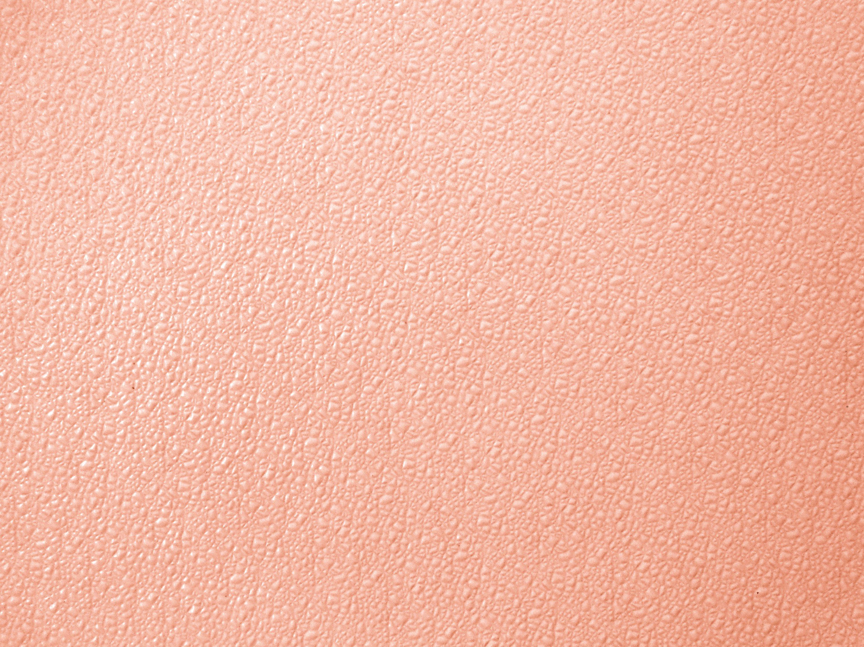 Peach Color Wallpaper Wallpapersafari