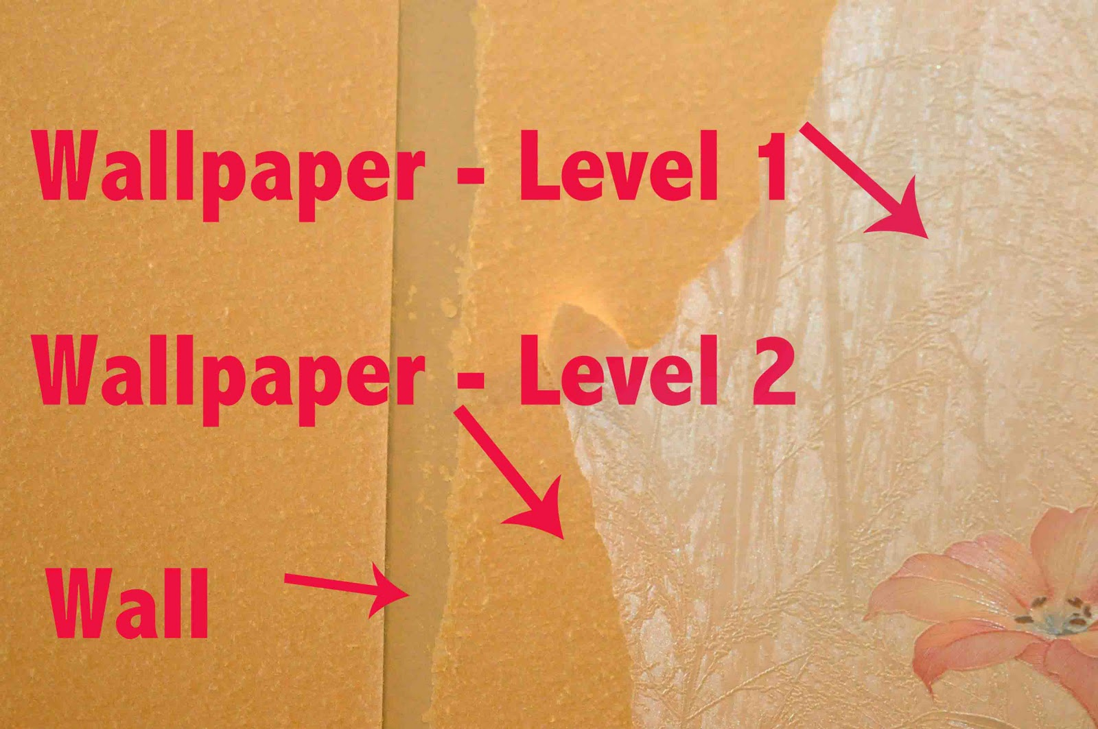 Removing Wallpaper   Part 1 1600x1063