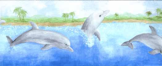 Dolphin Wallpaper Border   Wallpaper Border Wallpaper inccom 525x215