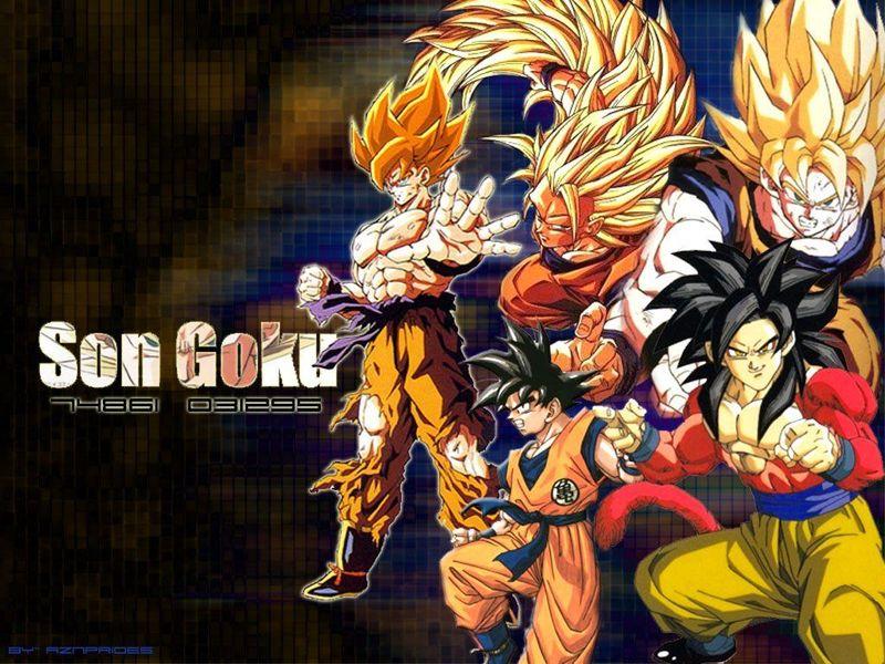Dragon Ball Z Wallpapers Goku All Super Saiyans   HD Wallpaper Gallery 800x600