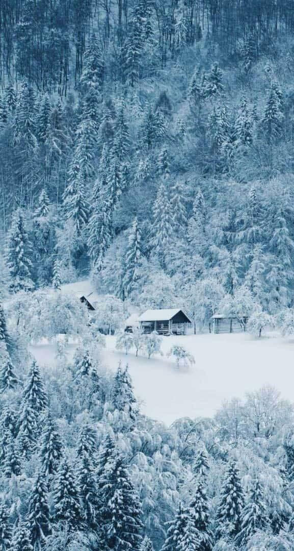 Beautiful Winter iPhone Wallpaper   21   Idea Wallpapers iPhone 577x1080