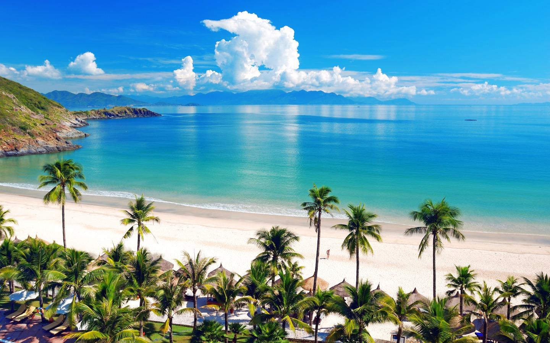 download Tropical Beach Wallpaper Desktop Background 1440x900