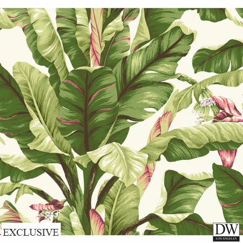 Ono Island Banana Leaf Wallpaper [TRF 56834] Designer Wallcoverings 500x500