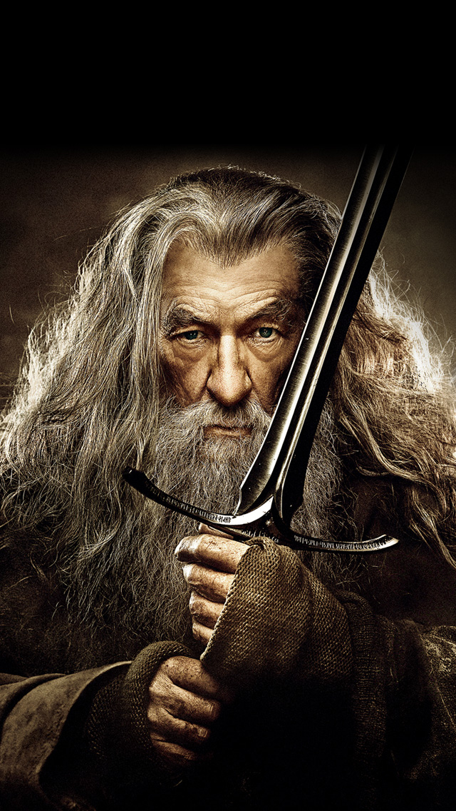 The Hobbit The Desolation of Smaug Gandalf Wallpaper   iPhone 640x1136