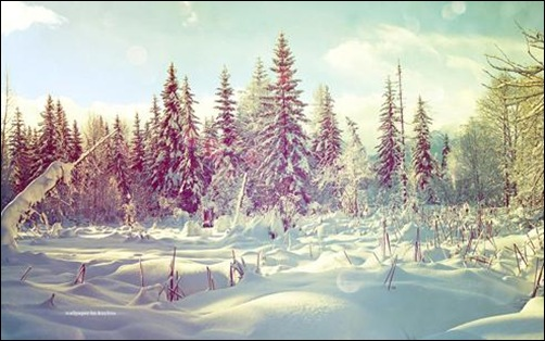 40 Breathtaking Winter Wallpaper Designs 502x314
