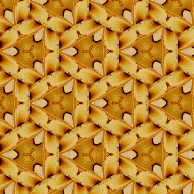 Geometric patterns 17 wallpaper groups from a butterflys wings 640x640