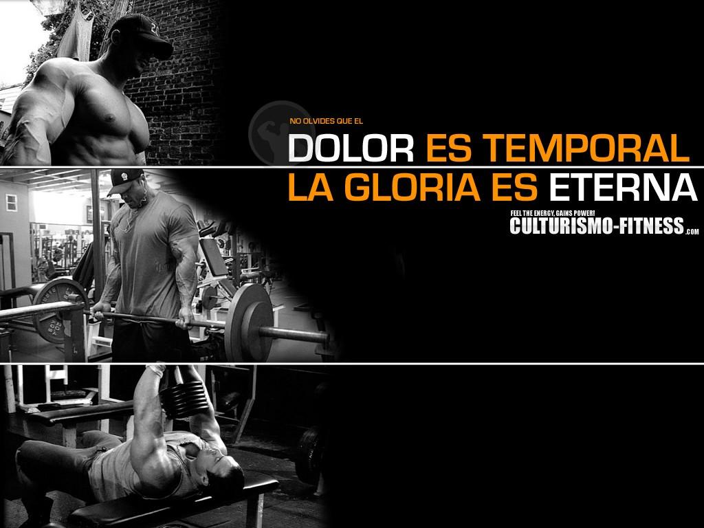 Free Download Algunos Wallpapers Motivacin Gym Taringa