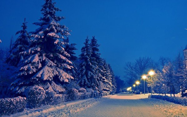Winter Wallpapers HD Wallpapers Early 600x375