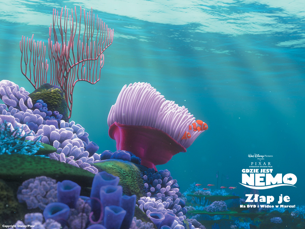 Finding Nemo Wallpaper 1024x768