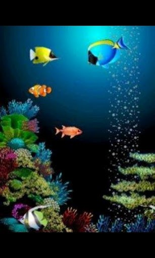 Download Animated Fish Live Wallpaper for Android by Cherry Studio 307x512