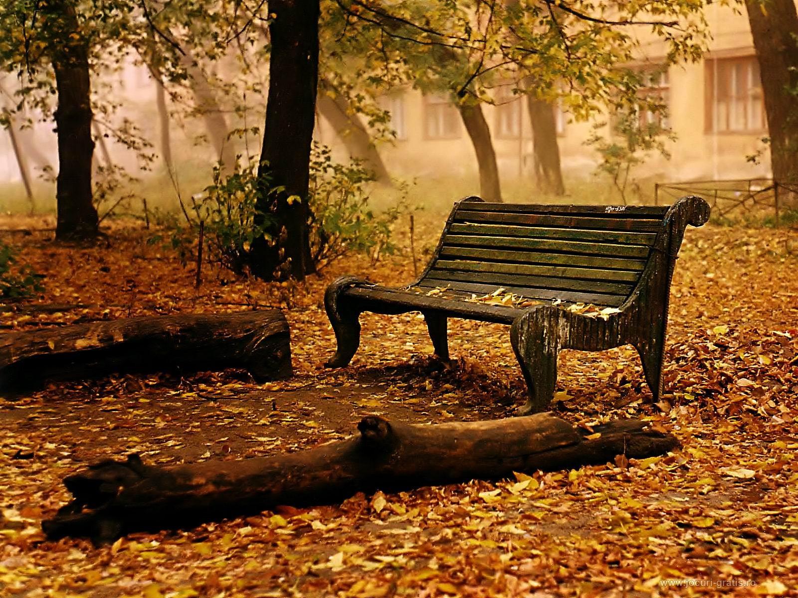 nature wallpaper autumn fall 1600x1200jpg 1600x1200