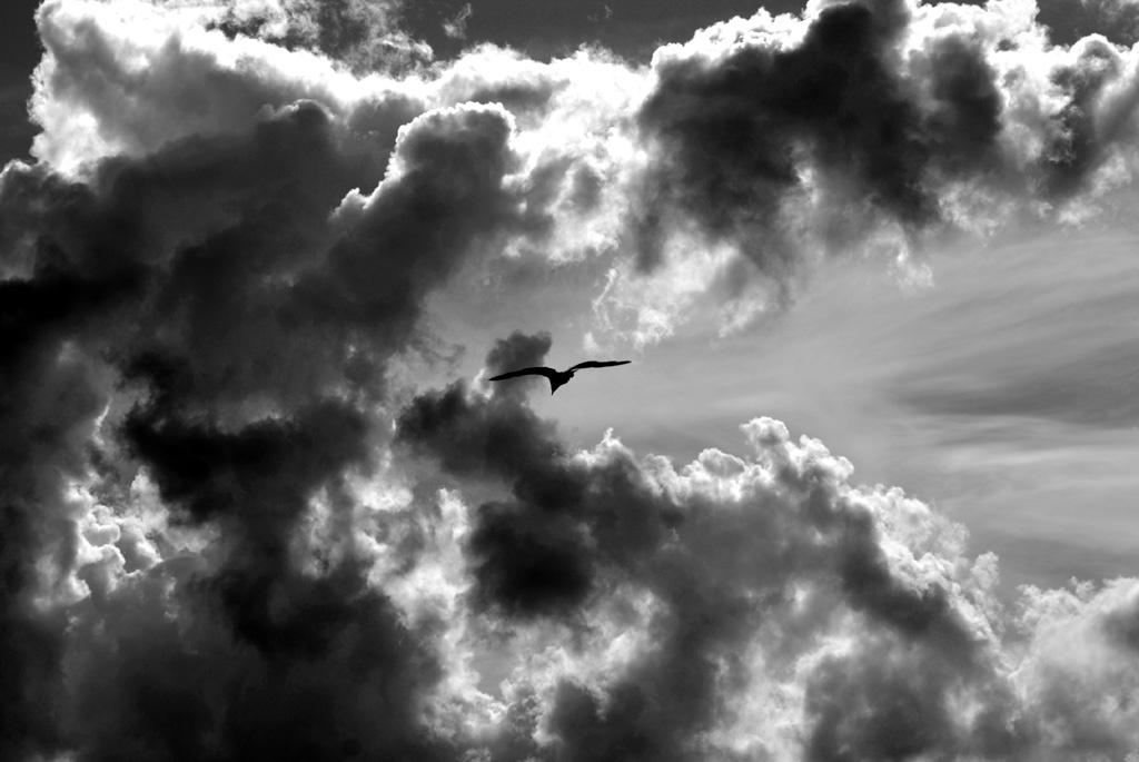 gray cloudy sky wallpaper