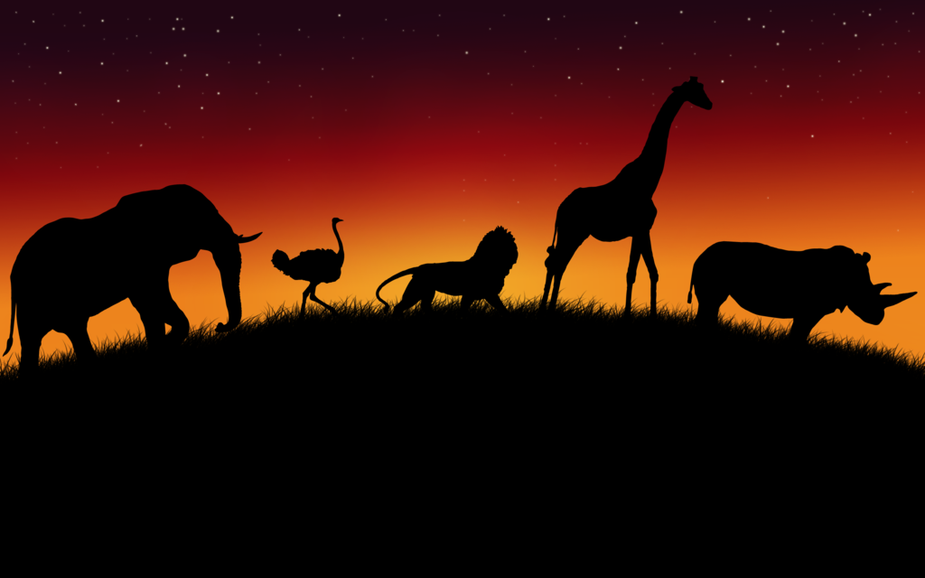African Animals Wallpaper V2 by Lukasiniho 1024x640
