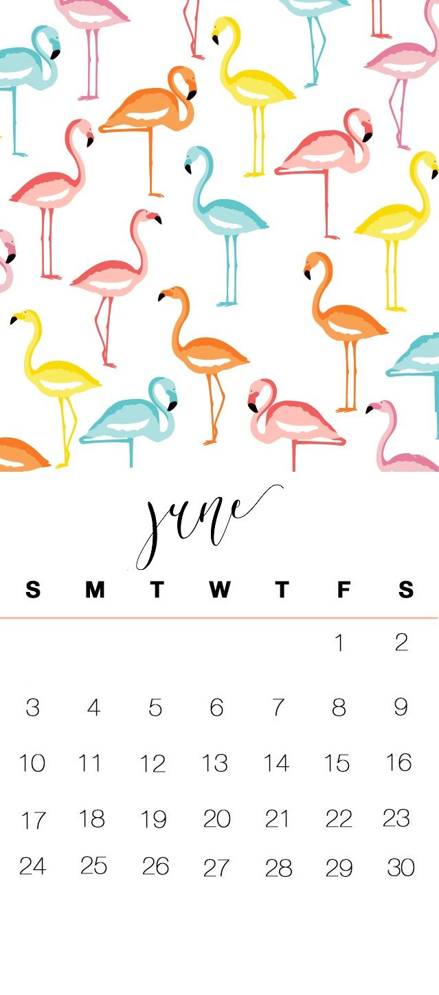June 2018 iPhone 6S Calendar Wallpapers Calendar 2018 in 2019 639x1449