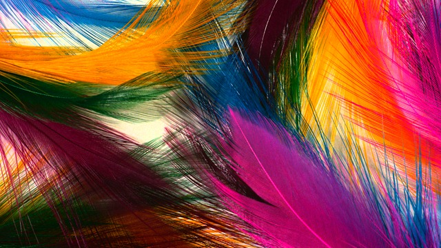 Very Beautiful Colorful feather HD Wallpaper Download Very Beautiful 640x360