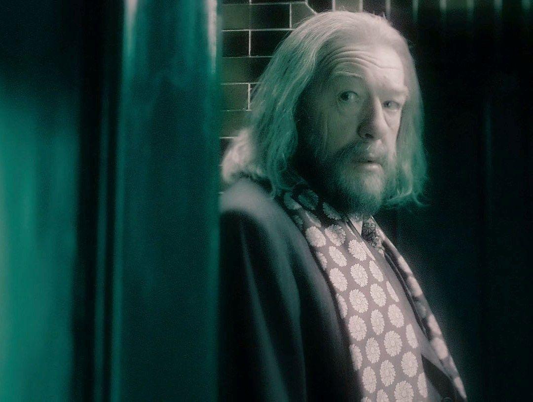 Albus Dumbledore in 2019 ORDER OF THE PHOENIX Albus dumbledore 1080x814
