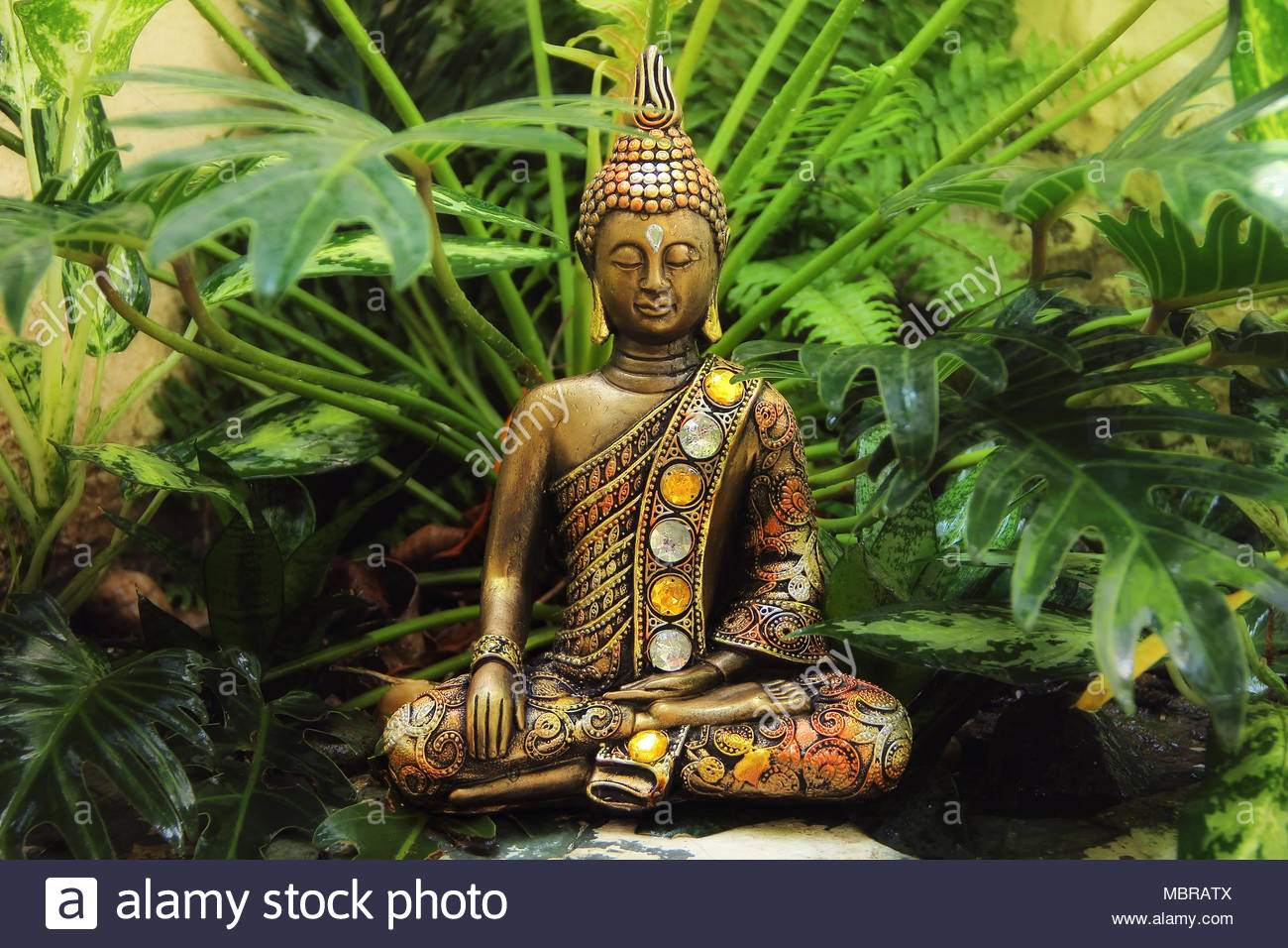 Siddhartha Gautama Stock Photos Siddhartha Gautama Stock Images 1300x956