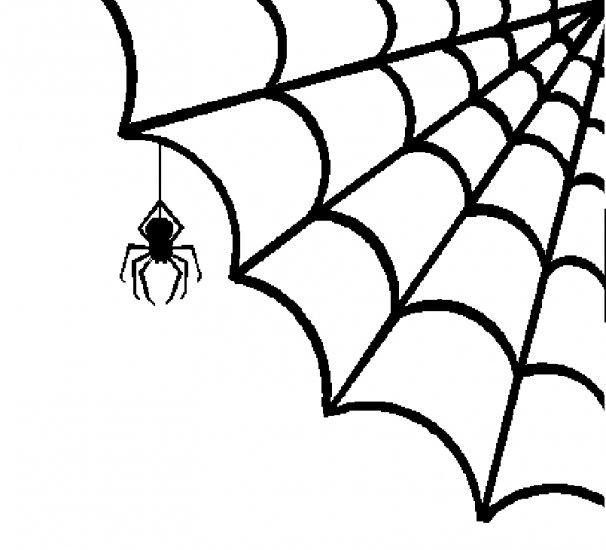 spiderweb background wallpapersafari