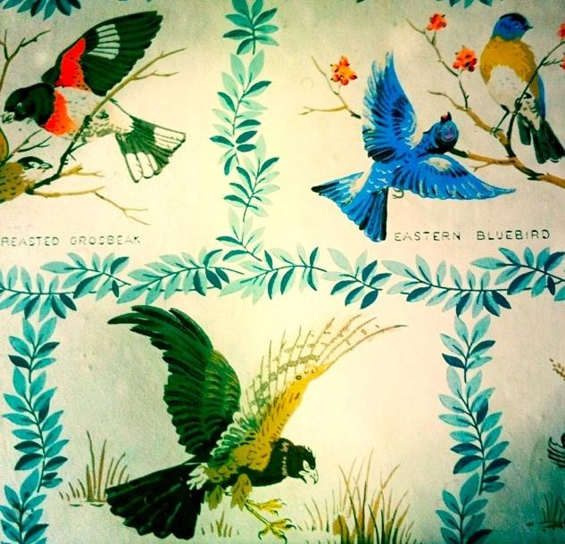 Vintage Birds Wallpaper Bird wallpaper 633x610