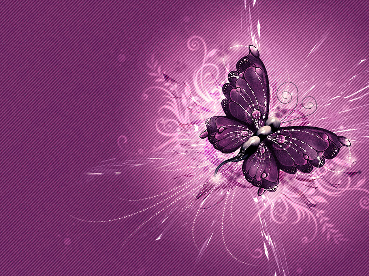HD wallpaper Fantastic Purple Butterfly Wallpaper Desktop Background 1280x960
