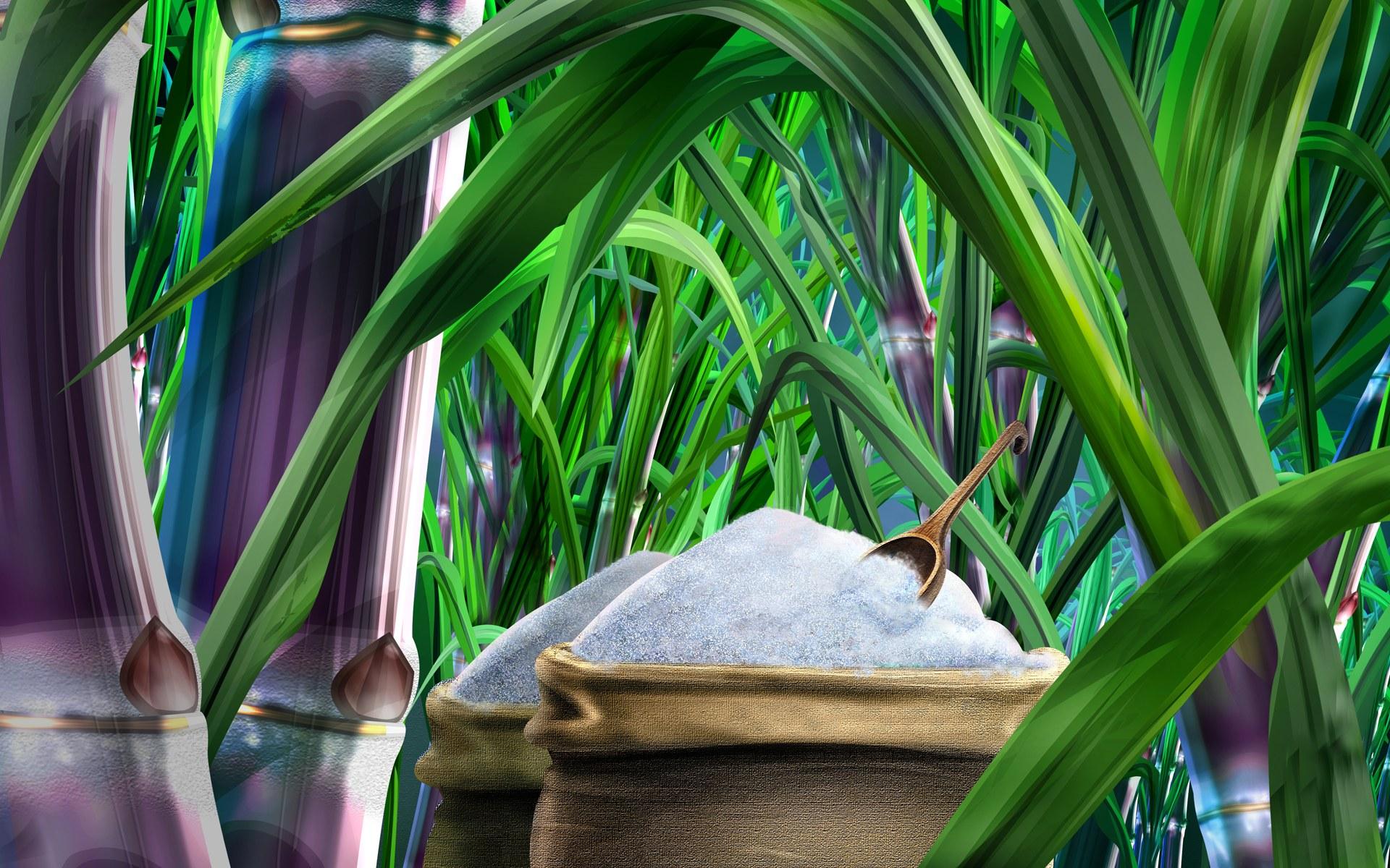 PSD Food illustrations 3127 sugar and sugarcane picturejpg 1920x1200