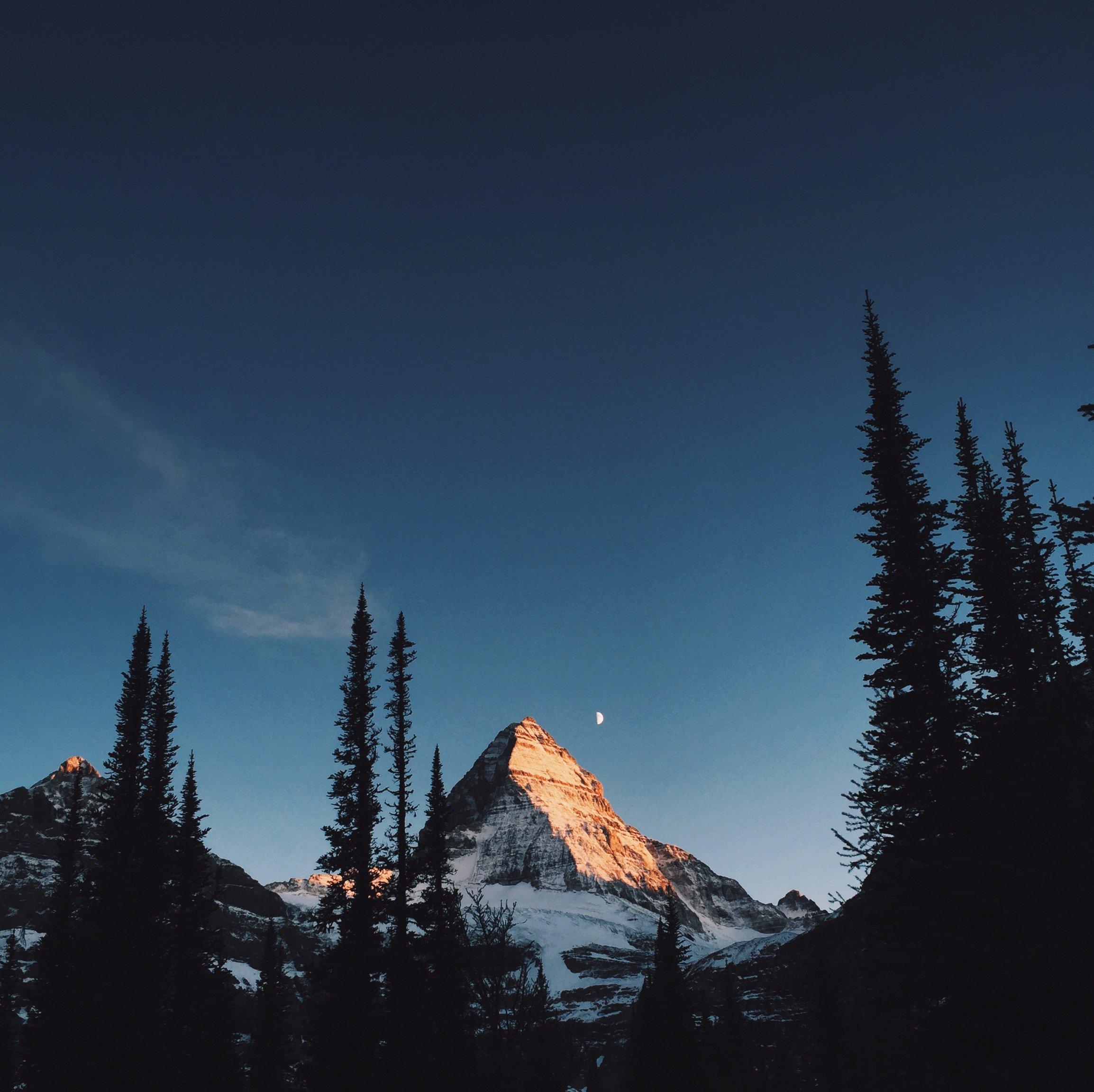 Alpenglow on Mount Assiniboine BC HD wallpaper 2308x2304