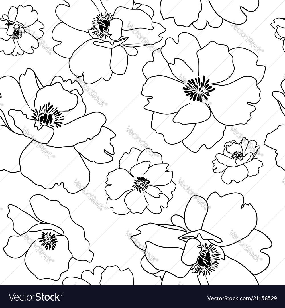 Poppy flower outline seamless background Vector Image 1000x1080