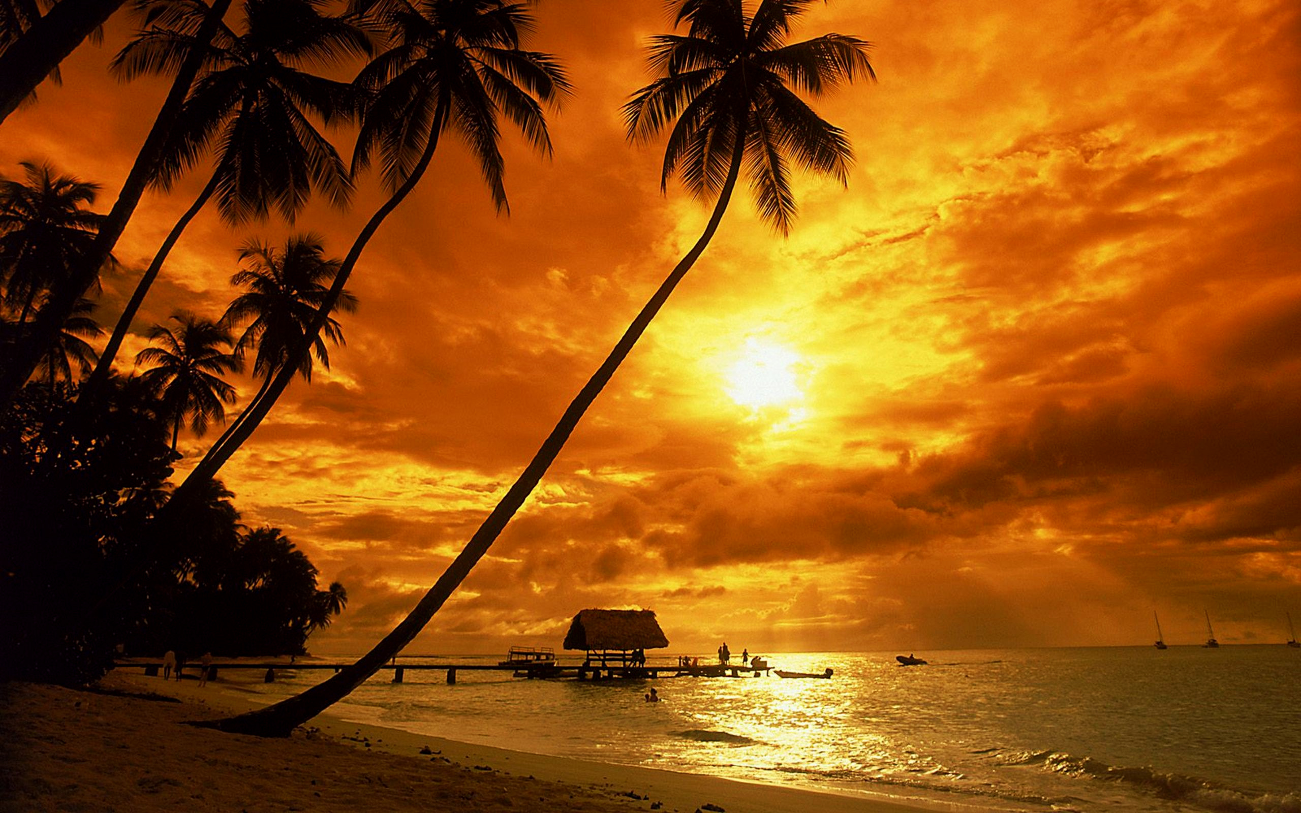 Hd Tropical Island Beach Paradise Wallpapers And Backgrounds: [39+] Tropical Beach Sunset Wallpaper Desktop On