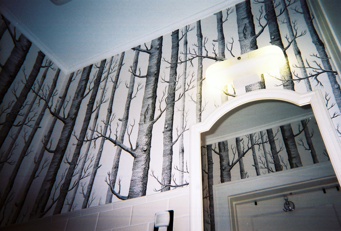 The Wallpaper Lady   Houston TX   Wallpaper Gallery 700x473
