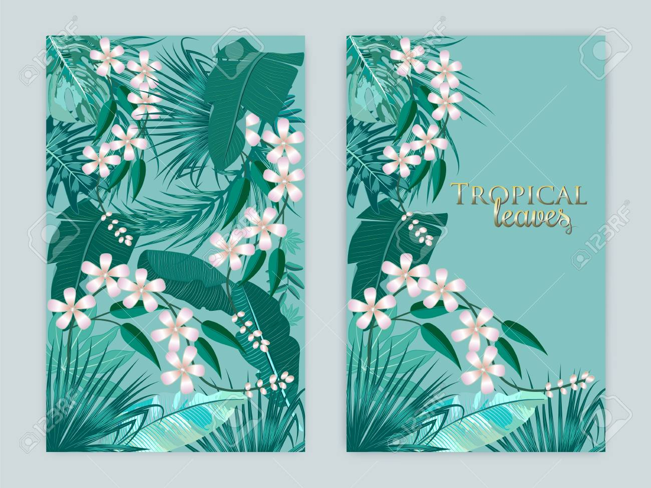Vector Tropical Background Set In Quetzal Green Colors Botany 1300x975