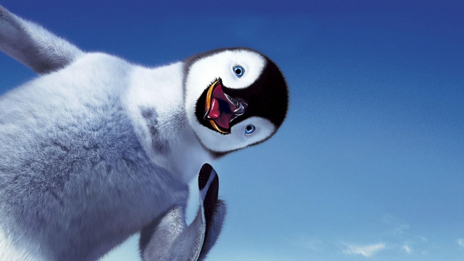 Baby Penguin Desktop Wallpaper Wallpapersafari
