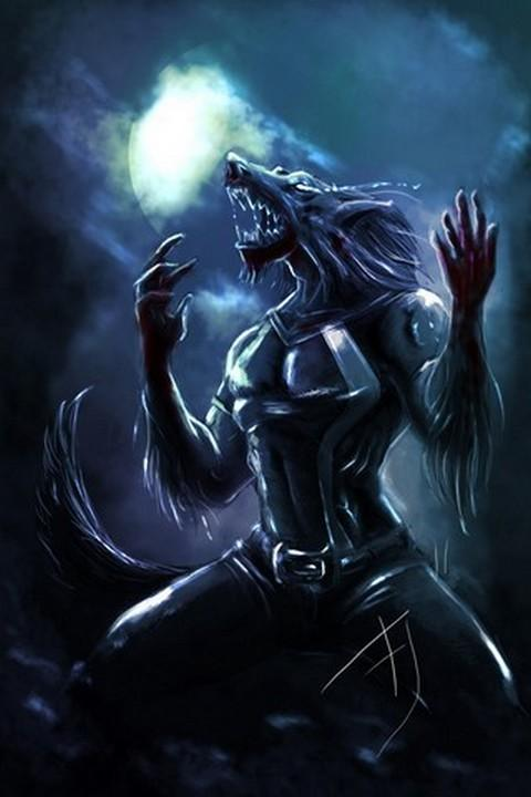 Wolf HD Wallpapers FREE   Android Apps on Google Play 480x720