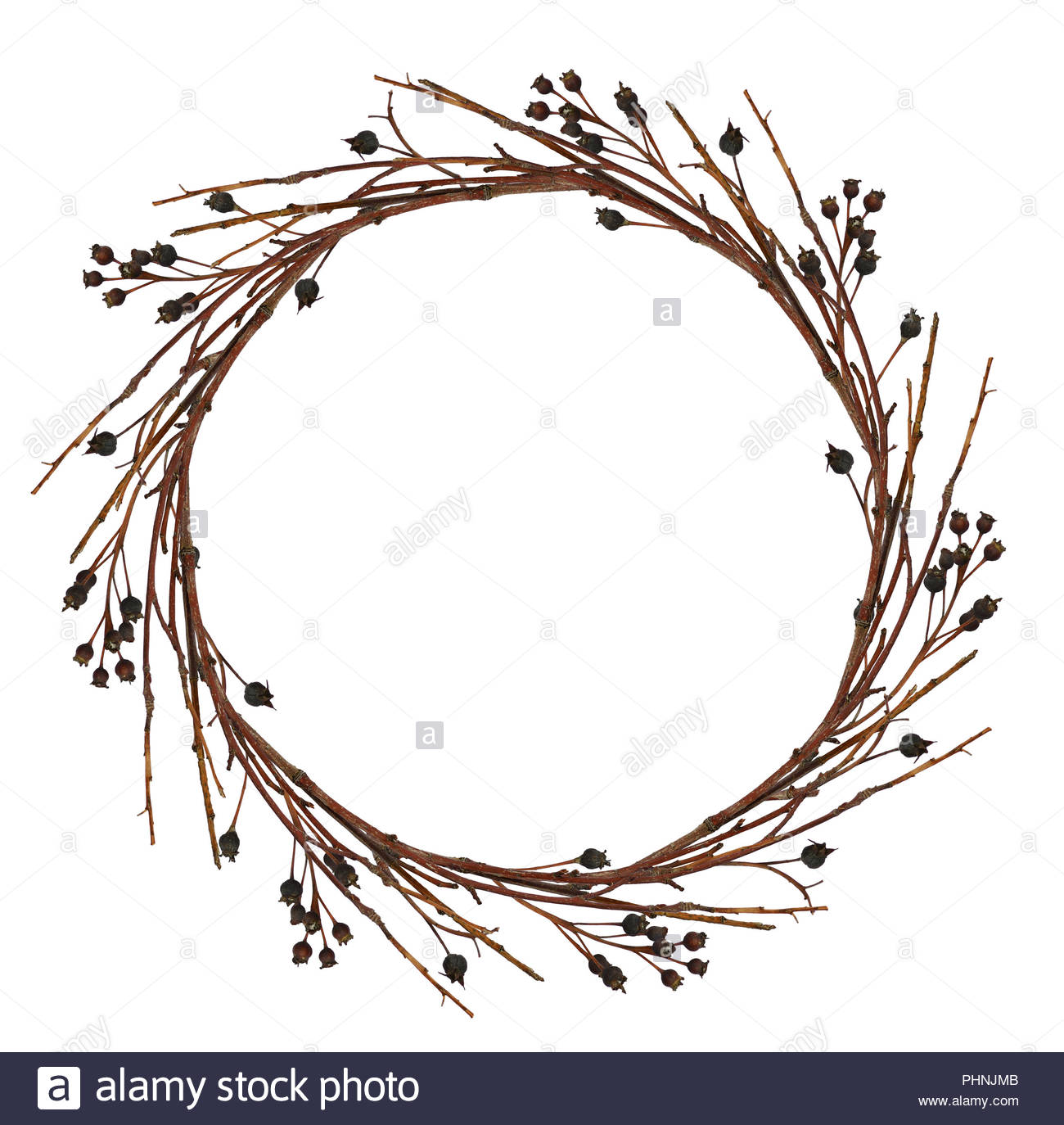 Round wreath from dry twigs with black berries isolated on white 1300x1374