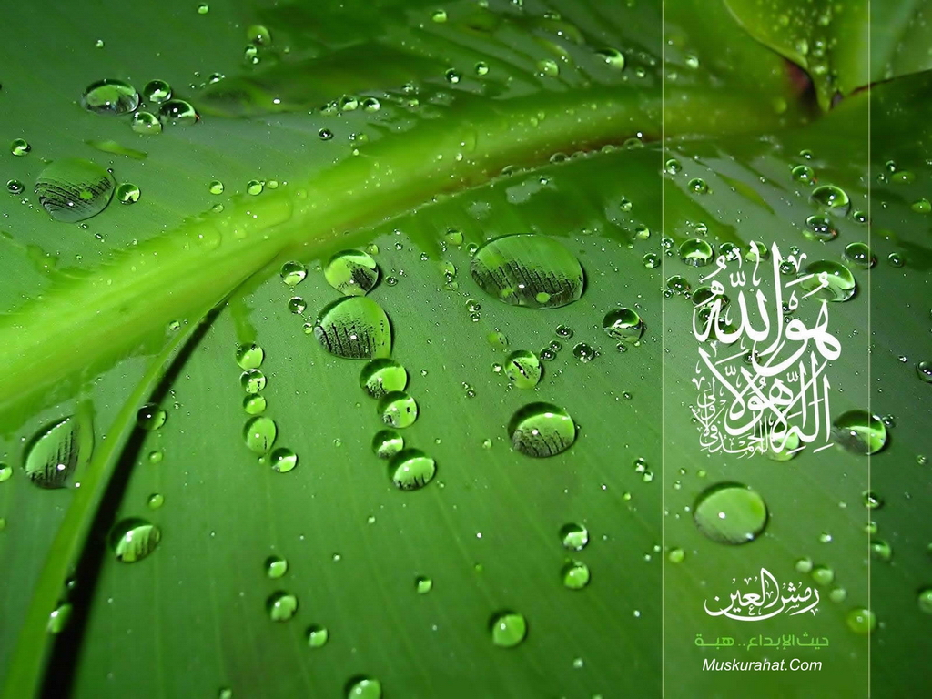Islamic Wallpapers Page 1 1024x768