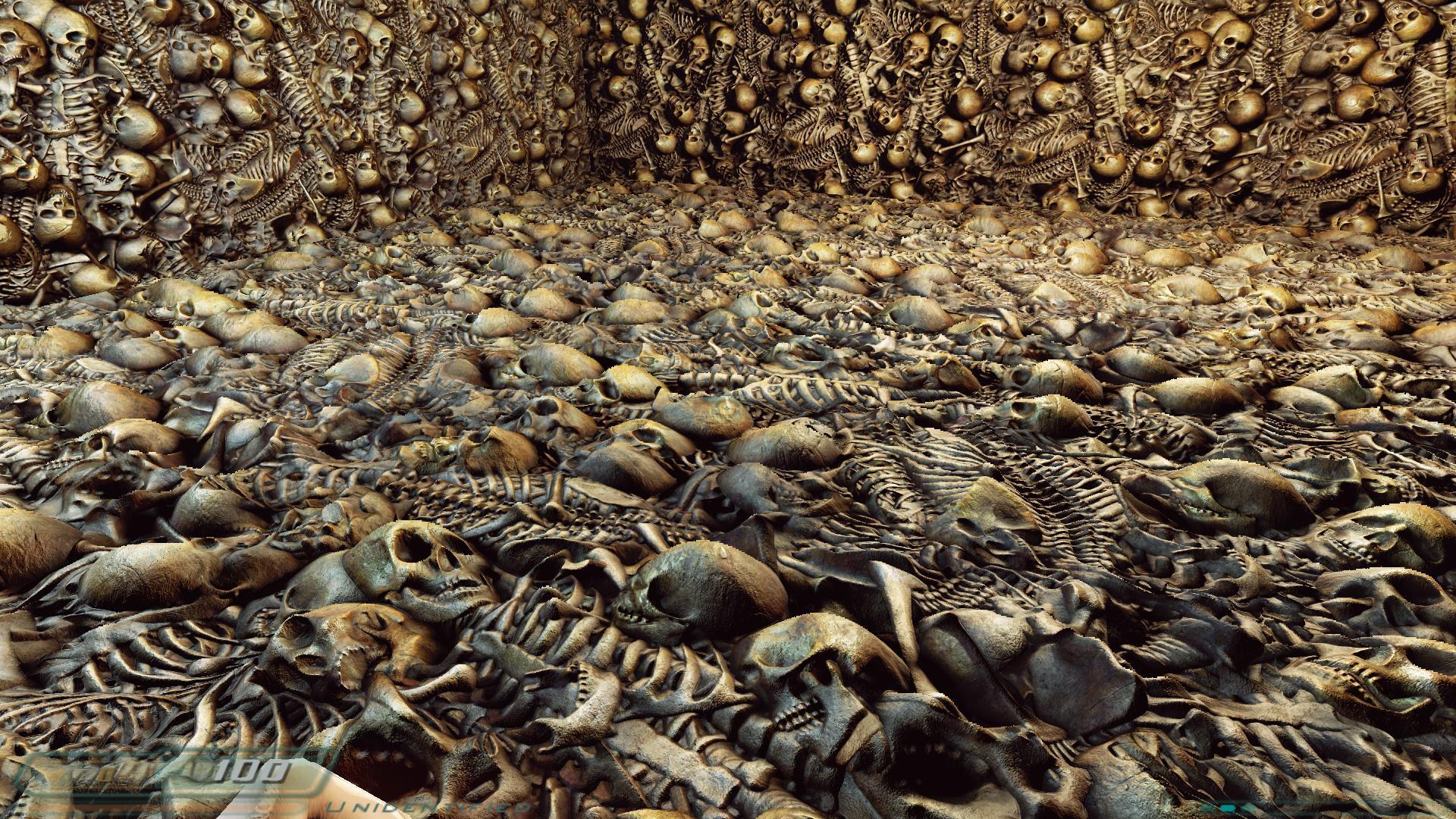часто картинки море скелеты химках
