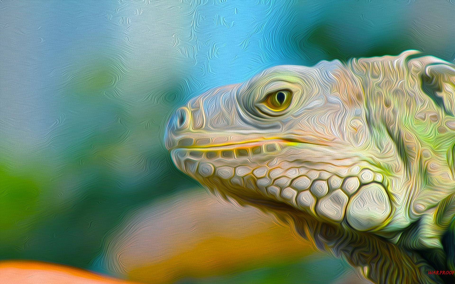 IGUANA HD Wallpaper Background Image 1920x1200 ID441833 1920x1200