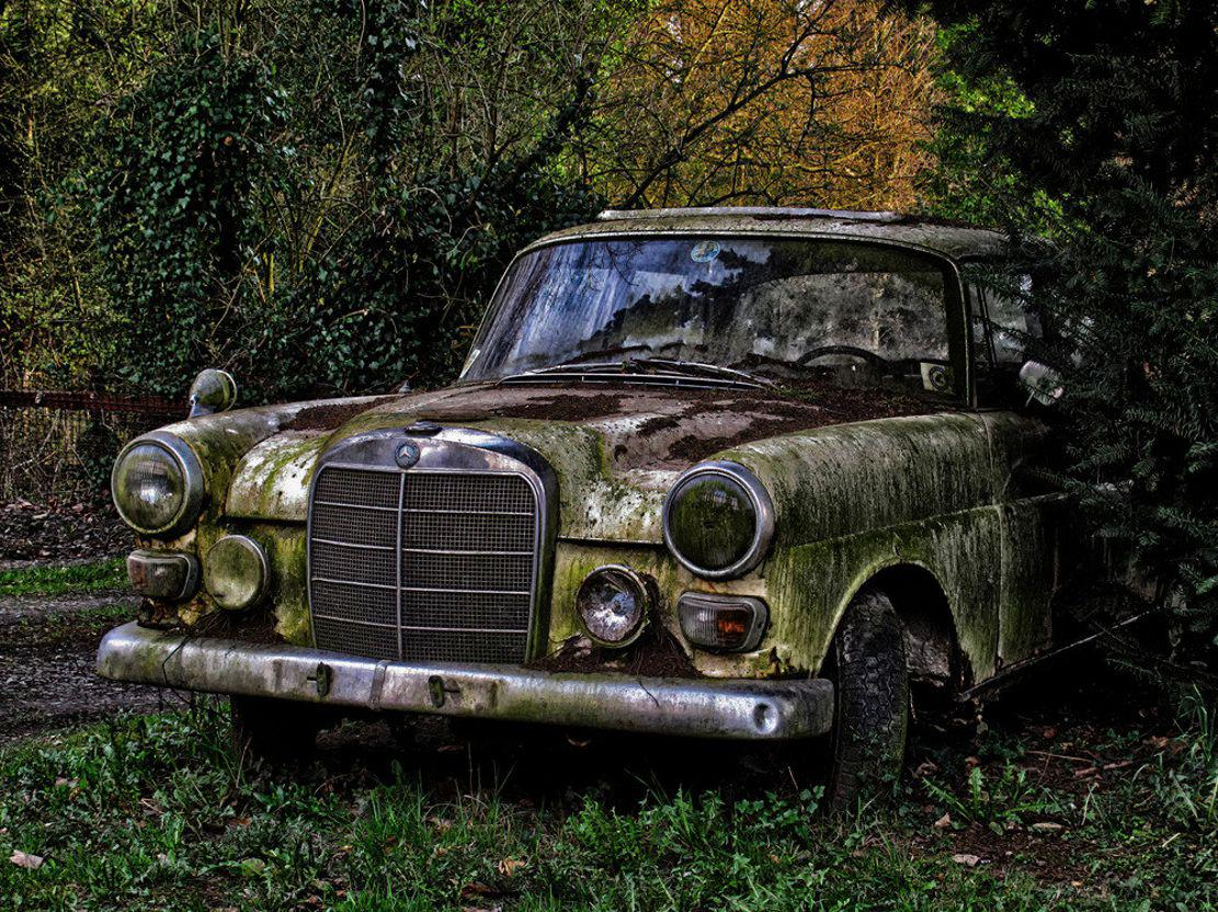 Abandoned Old Cars Wallpaper