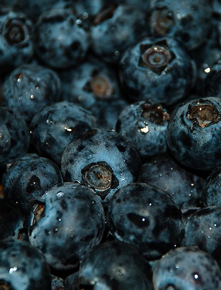 Blueberries Wallpaper for Amazon Kindle Fire HD 89 450x590