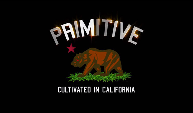 Primitive Apparel Logo Primitive apparel x grizzly x 640x375