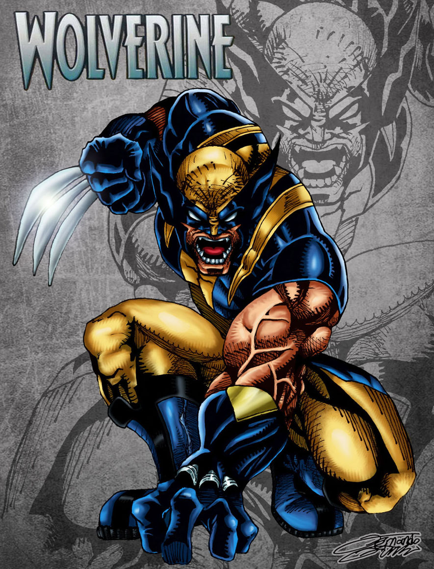 Wolverine Wallpaper Full Hd Wallpapersafari