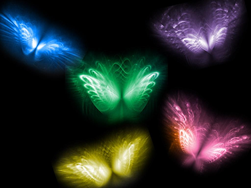 Cool Neon Butterflies Cool Neon Butterfly 1024x768