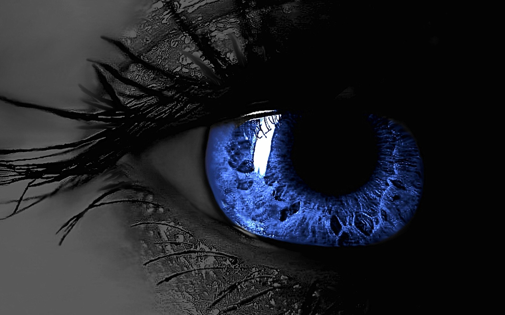 Blue Eye Widescreen HD Wallpaper 1920x1200