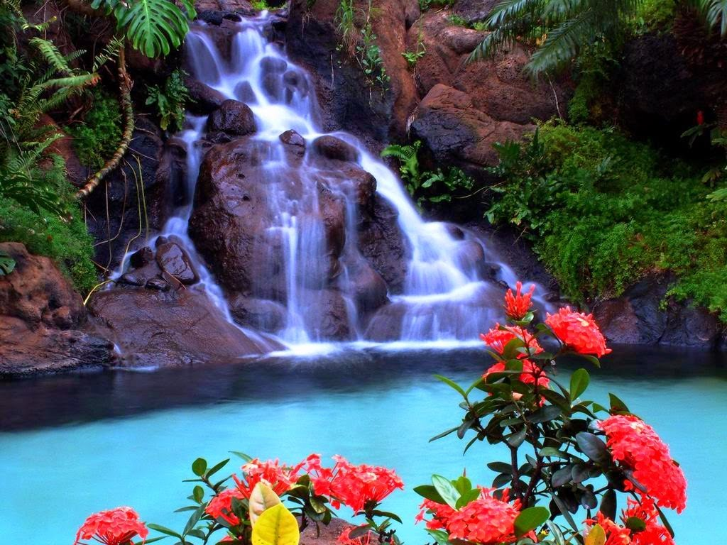 Download Animated Waterfall Wallpaper in high resolution for 1024x768