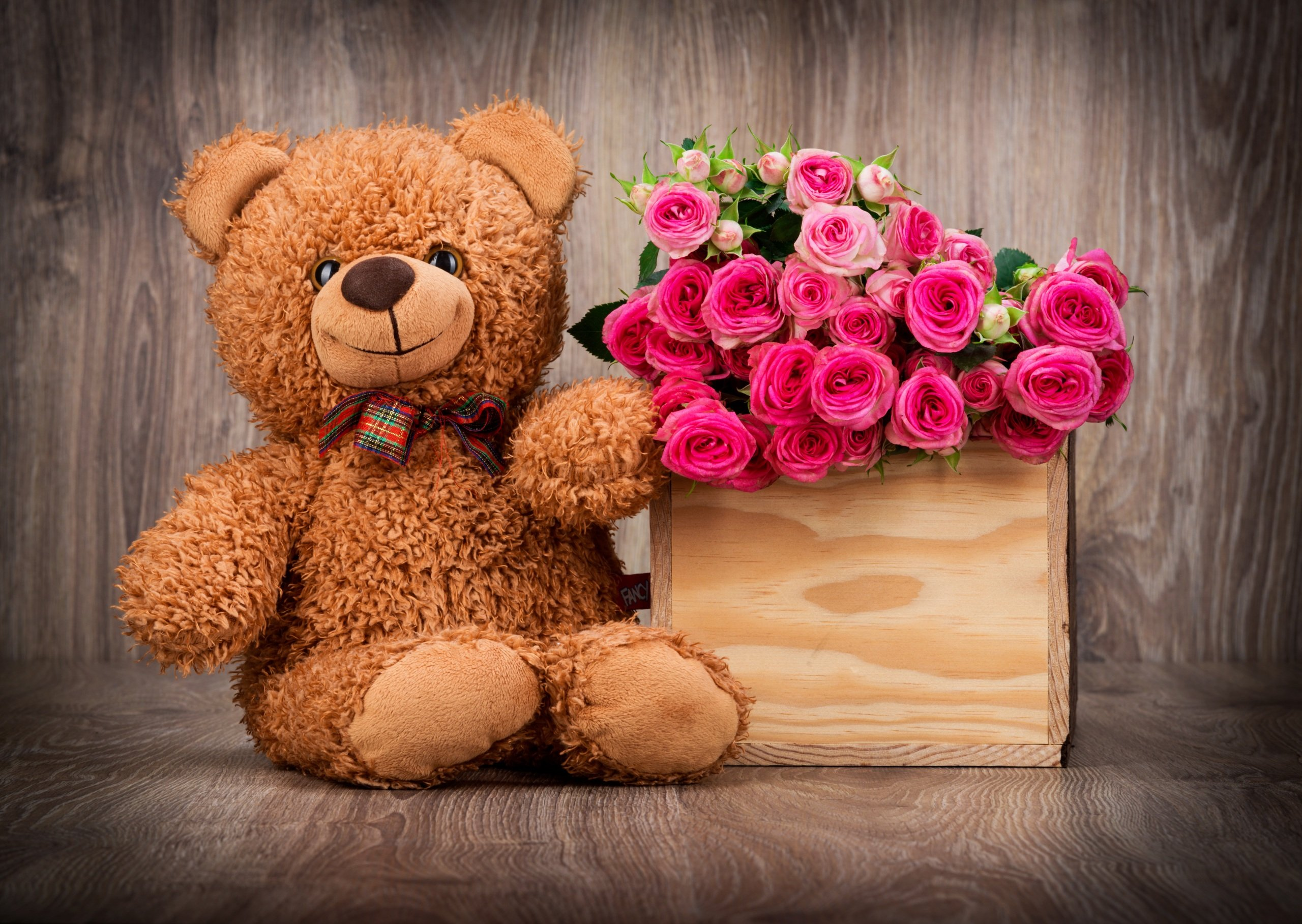 Love Teddy Bear Hd Wallpaper : cute Teddy Bears Wallpapers - WallpaperSafari