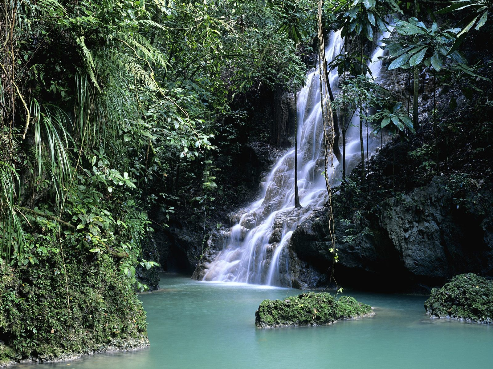 Forest Jamaica Wallpaper 1600x1200 Forest Jamaica Waterfalls 1600x1200