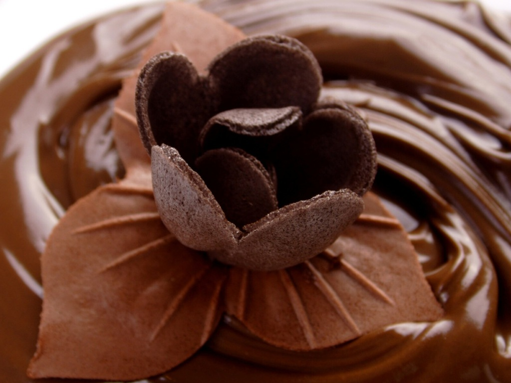 chocolate   Chocolate Wallpaper 30471795 1024x768