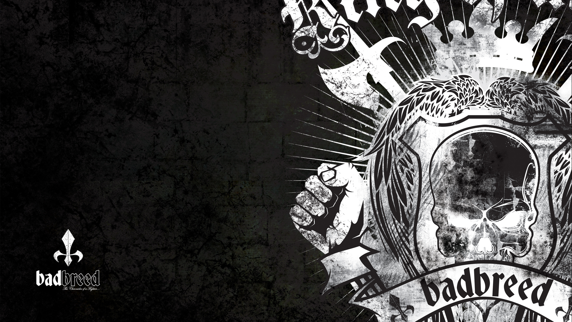 Viewing Gallery For Bad Boy Mma Logo Wallpaper 1920x1080